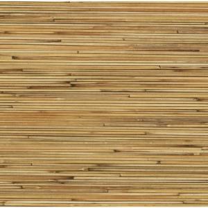Bambú Tajimi